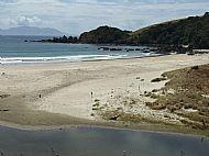 The Beach at Tawharanui Regional Park.