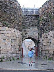Camino: Lugo to Santiago