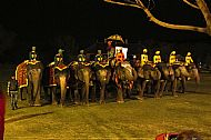 Line-up for Elephant Polo at Jaipur