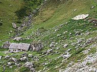 Cheese bothy and penned sheep