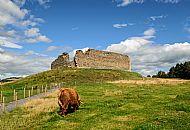 [Shortlisted] Castle Roy