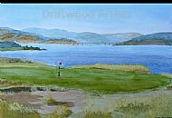 Kessock Bridge from Castle Stuart