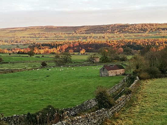 autumn west witton morning, by roddy mackay, the old vicarage b&b