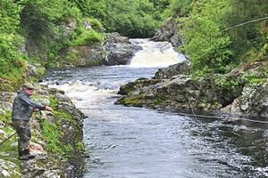 river shin