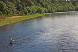 lower beauly fishings, river beauly