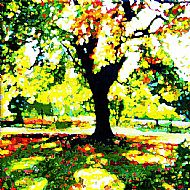Tapton Park