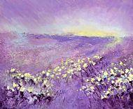 Beeley Moor Cotton Grass
