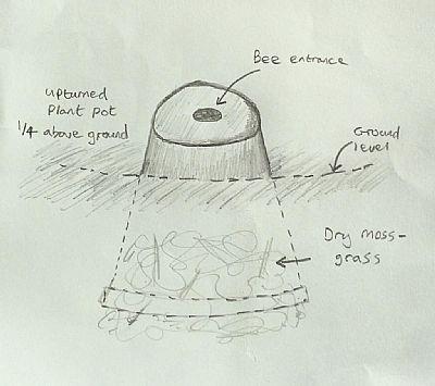 bumblebee pot