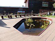 Giltbrook School Pond
