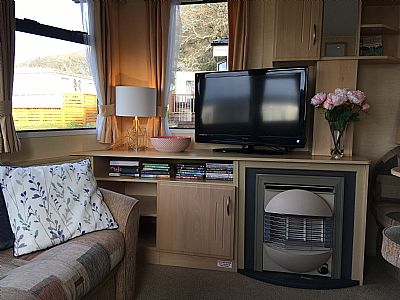 tv and gas fire