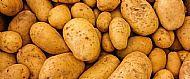 IOW White Potatoes