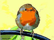 Pitlochry Robin