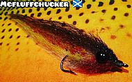 highland brown trout