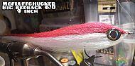 big redback baitfish
