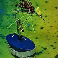 floating bug