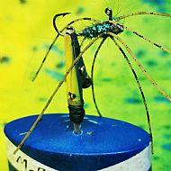 olive spider jig