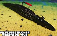 black eel jig