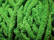 stoner fiber green