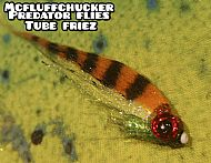 perch tube fry firetiger