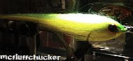 key lime greenback baitfish