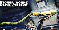 stoner wormz olive-yellow