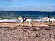 Broomhill Riding Centre Fortrose