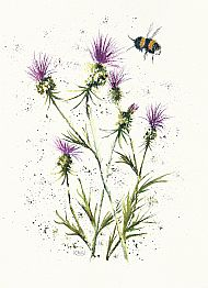 bee and thistles