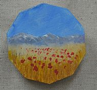 poppies and mountain brooch