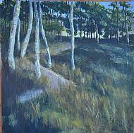 Woods at Tarland