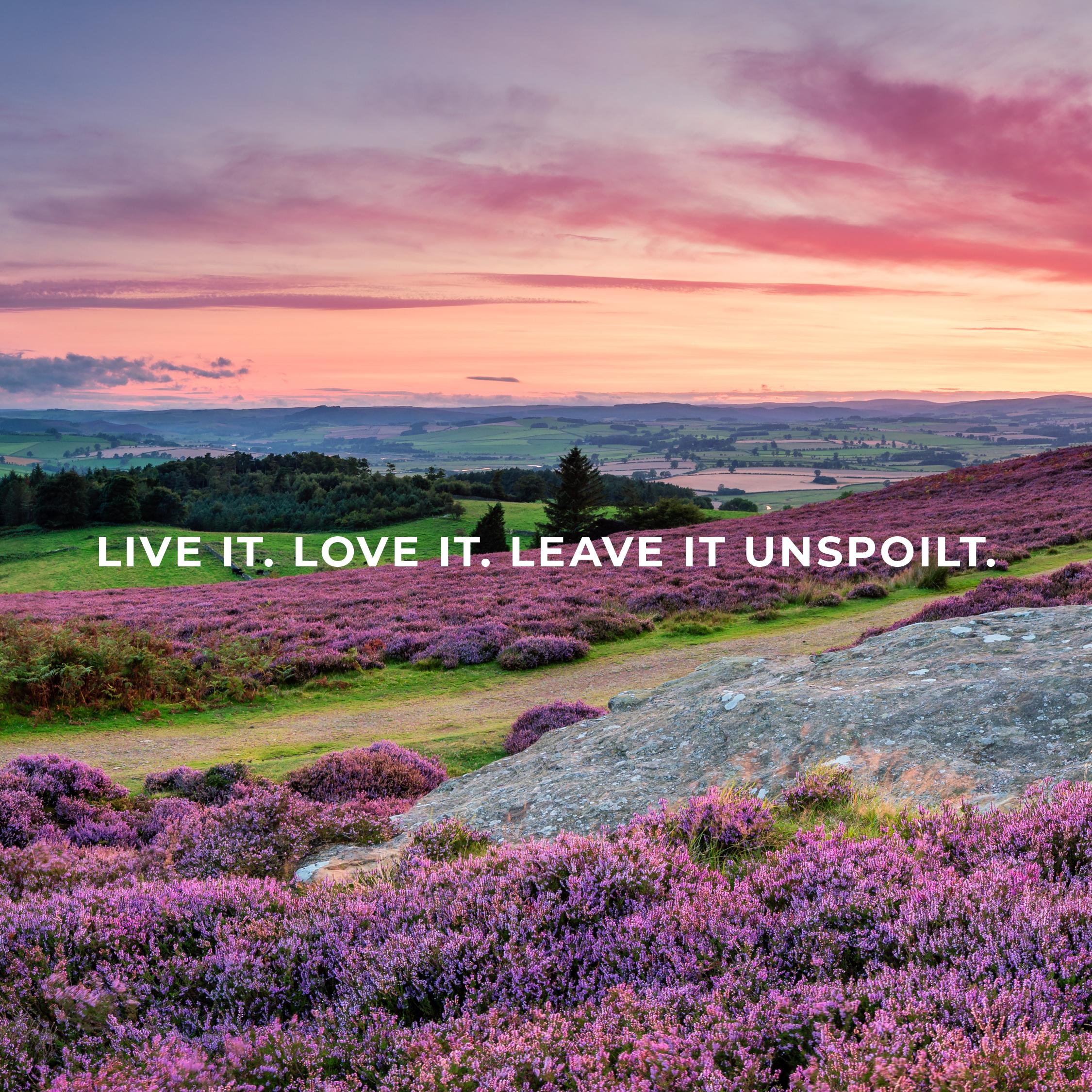 love northumberland image