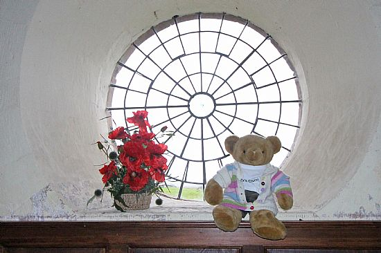 big ted sitting in the round window
