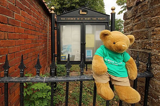 big ted sitting on a fence