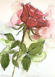 Eternal Red Rose