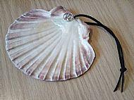 Smudge Shell Fan