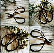 Ritual Scissors