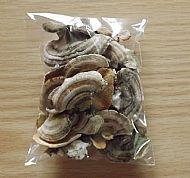 Turkey Tail Fungus Medicine