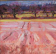 Culmaily Fields