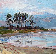 Pine Trees on Loch Fleet