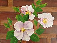 Cathy Reid M Des RCA,  Snowbush Rose