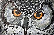 Owl, 6
