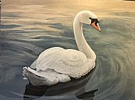 David Turner OBE, Mute Swan