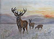 Gaye Thornton-Kemsley, Stag and Does in Winter Sunshine