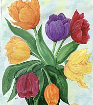 Margaret-Anne Mackie , Tulips