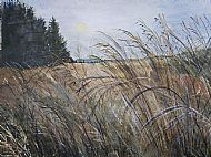 Susie Smith, Grasses, Morning