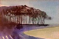Adela Crone, Landscape with Woods