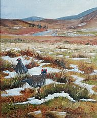 Cathy Reid M Des RCA, Red Grouse