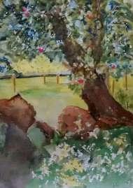 Hilda Findlay, Landscape