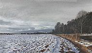 David E Johnston RSW Winter Furrows