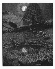 Dewpond by moonlight