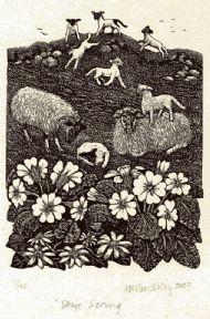 Skye Spring
